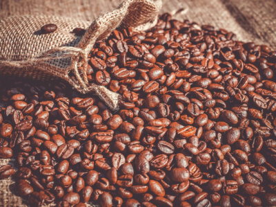togo-hosts-major-roundtable-to-promote-african-robusta-output
