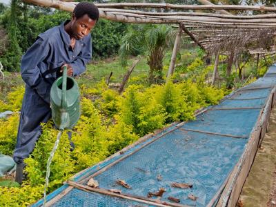 le-togo-va-doter-50-zones-agricoles-de-superstructures-et-de-systemes-d-irrigation