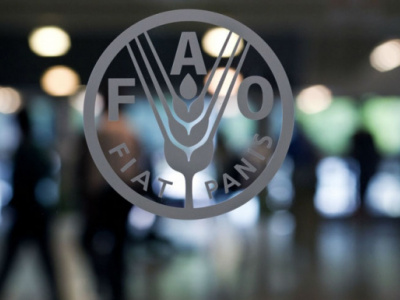 fao-signs-financing-agreements-with-7-local-partners-on-the-sideline-of-its-40th-anniversary-in-togo