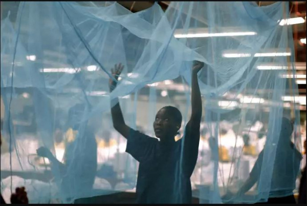Togo: A campaign to distribute six million mosquito nets to be launched