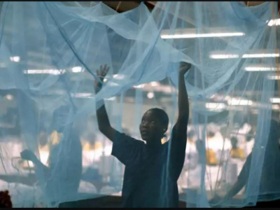 togo-a-campaign-to-distribute-six-million-mosquito-nets-to-be-launched