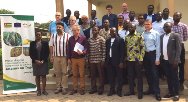 A five-year strategic action plan to boost the pineapple sector in Togo