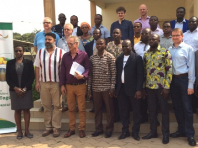 a-five-year-strategic-action-plan-to-boost-the-pineapple-sector-in-togo