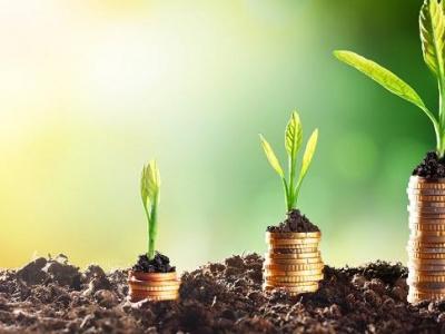 togo-des-investissements-qui-ont-quasiment-double-dans-le-secteur-agricole-sur-les-dernieres-annees