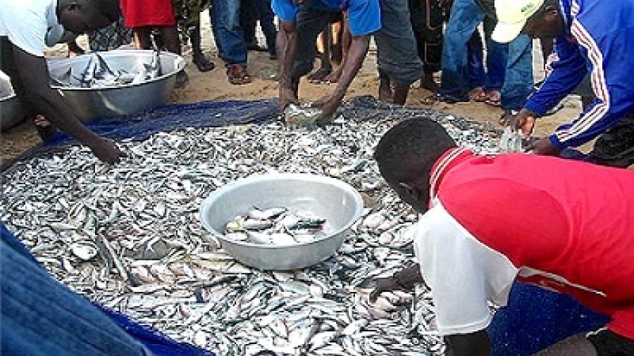 togo-l-isma-propose-un-master-en-aquaculture-peche-et-transformation-des-produits-halieutiques