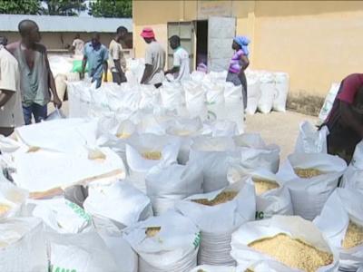 togo-s-food-security-agency-ansat-begins-sales