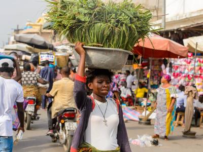 le-fonds-de-l-opep-injecte-10-millions-dans-l-integration-agricole-au-togo