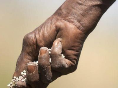 togo-government-to-spend-cfa1-5-billion-in-2019-on-fertilizer-subsidies