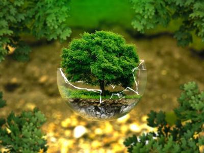 preservation-de-l-environnement-112-projets-deja-finances-au-togo-par-le-fonds-pour-l-environnement-mondial