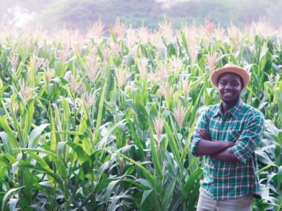 le-paeij-sp-lance-des-appels-a-projets-pour-la-selection-de-805-primo-entrepreneurs-agricoles