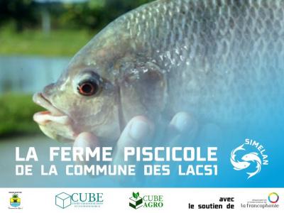 un-partenariat-public-prive-pour-le-developpement-d-une-ferme-piscicole-a-aneho