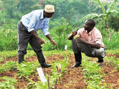 paeij-sp-initiates-transition-of-2-300-farmers-associations-into-cooperative-societies