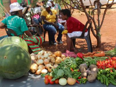togo-la-mauvaise-conservation-des-fruits-et-legumes-coute-46-milliards-fcfa