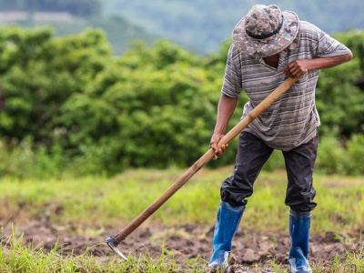 au-togo-des-convaincus-vulgarisent-l-agroecologie