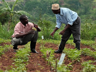 togo-les-producteurs-de-karite-anacarde-et-soja-se-forment-a-l-entrepreneuriat