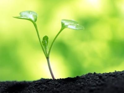 le-projet-de-developpement-des-agropoles-contribuera-a-reduire-le-deficit-commercial-du-togo-de-44-a-38