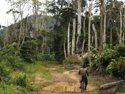 en-10-ans-le-pnud-a-injecte-environ-2-3-millions-euros-dans-la-protection-de-l-environnement-au-togo