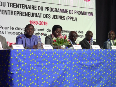 togo-to-date-the-youth-entrepreneurship-promotion-program-ppej-has-supported-around-3-000-entrepreneurs