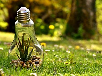 togo-appel-a-projets-du-fonds-pour-l-environnement-mondial-avec-la-possibilite-de-decrocher-une-subvention-de-50-000