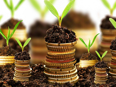le-mifa-facilite-3-8-milliards-fcfa-de-prets-au-profit-du-secteur-agricole