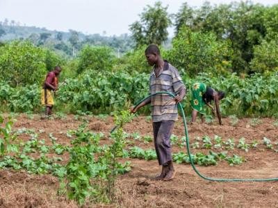 togo-un-forum-social-des-paysans-du-26-au-27-novembre-prochain