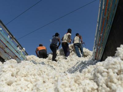 le-togo-table-sur-une-production-annuelle-de-225-000-t-de-coton-jusqu-en-2025