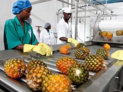 togo-les-restrictions-de-mobilite-anti-covid-19-peuvent-affecter-plus-de-2-millions-d-emplois-dans-le-secteur-alimentaire