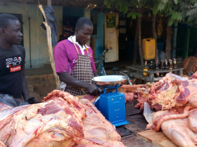 togo-government-to-hold-general-assemblies-to-tackle-the-shortfall-in-meat-production