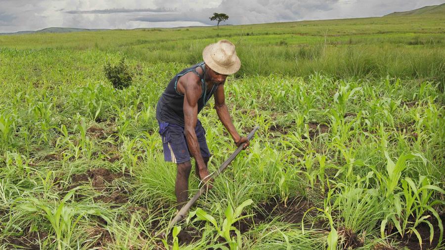 ppaao-togo-a-95-d-execution-plus-de-600-000-beneficiaires-dans-le-secteur-agricole
