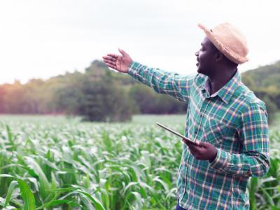 togo-un-projet-d-investissements-agricoles-massifs-en-2021