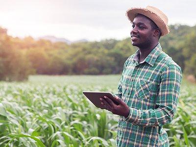 togo-une-campagne-pour-enroler-les-jeunes-dans-l-agroalimentaire