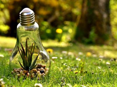 le-pnud-lance-un-appel-a-projets-pour-soutenir-les-initiatives-environnementales-au-togo