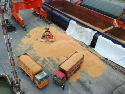 togo-authorities-plan-to-open-a-single-desk-for-the-exportation-of-soybeans-at-the-autonomous-port-of-lome