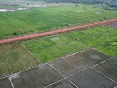 developpement-agricole-ou-en-est-le-projet-rizicole-de-mission-tove