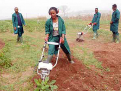 more-than-7-000-young-entrepreneurs-participate-in-the-ongoing-agripreneurs-forum-in-kara