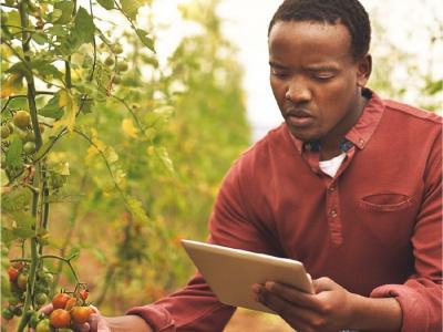 prix-gogettaz-agripreneur-2019-pour-jeunes-africains-50-000