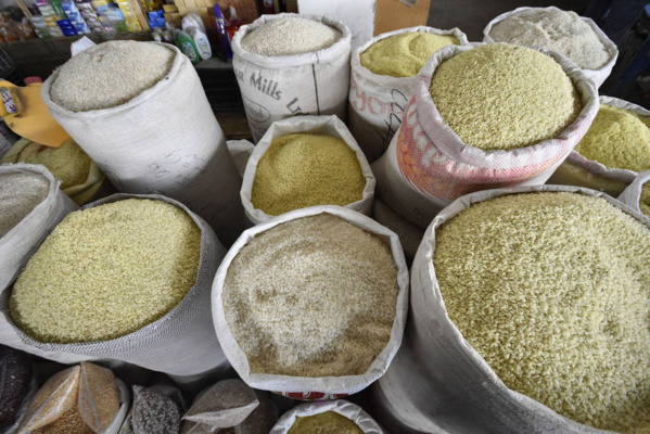 Togo's grain output rises for third consecutive campaign