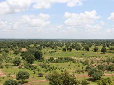 des-entreprises-pour-amenager-plus-de-8-000-hectares-de-terres-agricoles
