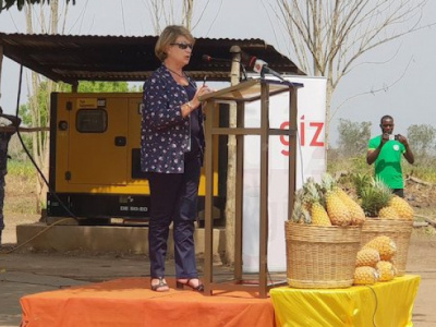togo-european-union-and-german-cooperation-invest-cfa4bn-in-the-pineapple-sector
