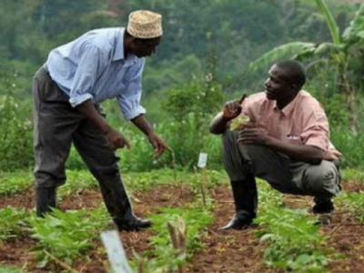 kara-agropole-project-various-key-actors-are-being-trained-to-help-boost-the-capacities-of-farmers