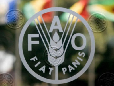 fao-boosts-food-security-in-northern-togo