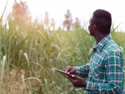 togo-le-ministere-de-l-agriculture-lance-une-plateforme-d-e-learning