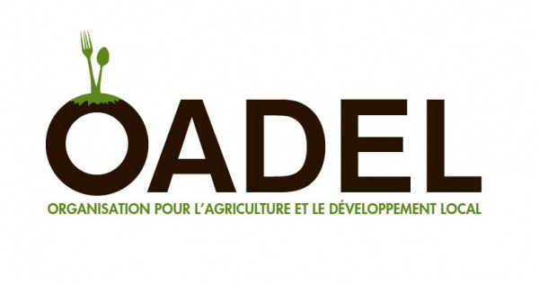 "OADEL releases a catalogue promoting ""Made in Togo"" products"