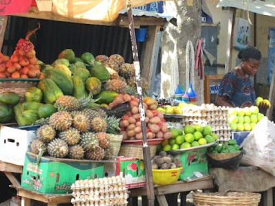 togo-to-spend-cfa478-million-to-boost-its-phytosanitary-control-and-certification-system-for-vegetables-and-fruits