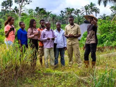 togo-du-cash-pour-les-entrepreneurs-ruraux-sur-les-3-prochains-mois