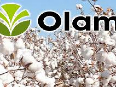olam-acquires-51-of-togo-s-cotton-company