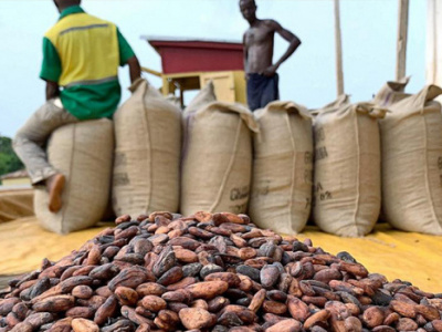 as-cocoa-exports-soar-coffee-s-plunge