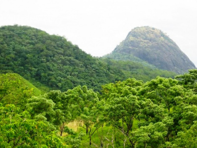 togo-india-injects-1m-in-biodiversity-preservation-project-at-the-fazao-malfakassa-national-park