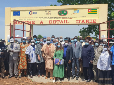 new-livestock-market-inaugurated-in-anie