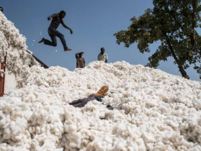 togo-cotton-farmers-urged-to-help-the-country-achieve-its-200-000-t-output-target-by-2022